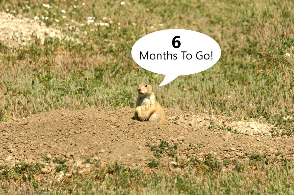 6 months!
