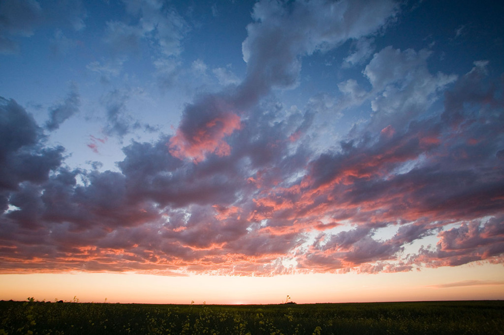 Pink clouds Photo credit: Ryan Goolevitch