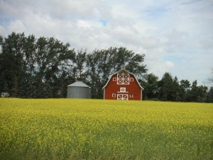 Farm near Sask-Cache-One Photo credit: Mountain_Wander (from log on geocaching.com)