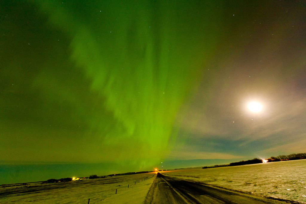 February Aurora North of Regina Photo credit: Ryan Goolevitch