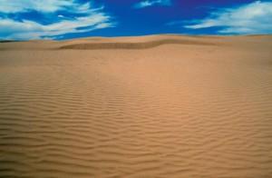 Great Sand Hills Photo credit: Tourism Saskatchewan/ Douglas E. Walker