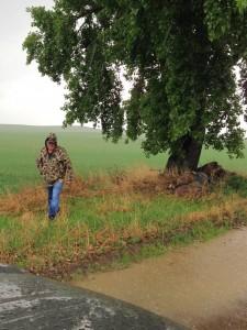 Olemaz Hiding Caches in the Rain
